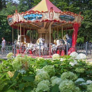 Carousel in the Old Town Garden