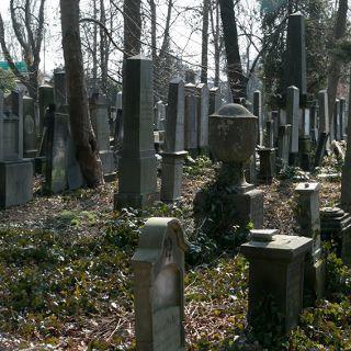 Zdjęcie wydarzenia Stary Cmentarz Żydowski
