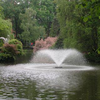 Zdjęcie wydarzenia Botanical Garden season 2020 – opening hours