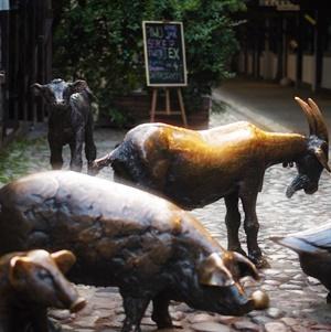 Jatki - Pomnik Zwierząt Rzeźnych
