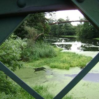 Mosty: Kładka Siedlecka